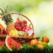 Basket of tropical fruits on green grass — Stock Photo #22200755