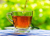 Cup of tea on nature background — Stock Photo