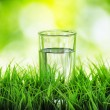 Glass of water on nature background — Stock Photo #22789150