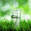 Glass of water on nature background — Stock Photo #22789174