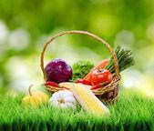 Verdure fresche nel cestino sull'erba verde. — Foto Stock