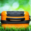 Orange suitcase in green grass on natural background - Stock fotografie