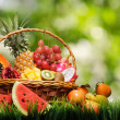 Basket of tropical fruits on green grass — Stockfoto