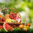 Stock Photo: Basket of tropical fruits on green grass