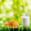 Royalty-Free Stock Photo: Fresh cinnamon bun and glass of milk on nature background