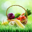 Fresh vegetables in the basket on green grass. — Stock Photo