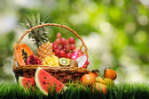 Basket of tropical fruits on green grass — Stock Photo