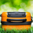 Orange suitcase in green grass on natural background - Photo
