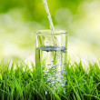 Glass of water on nature background — Stock Photo #25556937