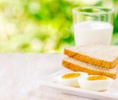 Haşlanmış yumurta, tost ve bir bardak süt — Stok fotoğraf