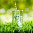 Glass of water on nature background — Stock Photo #27219101