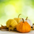 Pumpkins on green natural background — Stock Photo #29027743