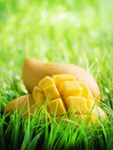 緑の芝生の上の黄色のマンゴー — ストック写真