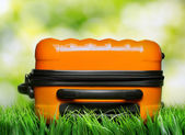 Orange suitcase in green grass on natural background — Stock Photo