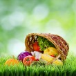 Fresh vegetables in the basket on green grass. — Stock Photo #31962465