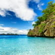 Tropical seashore — Stock Photo #33213551