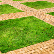 Green grass and brick paths — Stock Photo #36013645