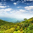 Tropical landscape. Mountains and sea — Stock Photo