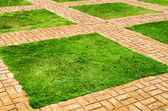 Green grass and brick paths — Stock Photo
