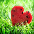 Watermelon heart on green grass. Valentine concept — Foto Stock