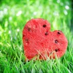 Watermelon heart on green grass. Valentine concept — Stock Photo #38662761