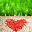Heart sign on nature background — Stockfoto
