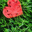 Watermelon heart on green grass. Valentine concept — Stock Photo #39262215