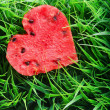 Watermelon heart on green grass. Valentine concept — Stock Photo #39766355