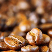 Roasted arabica. Close-up of coffee beans — Stock Photo