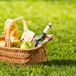 Picnic — Stock Photo #12596829
