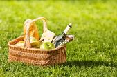 野餐 — 图库照片