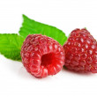 Raspberry — Stock Photo #12662664