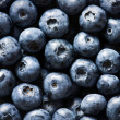 Blueberry — Foto Stock