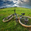 Bike — Stock Photo #16494873