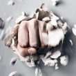 Fist — Stock Photo #16495159