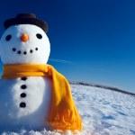 Snowman — Stock Photo #21126293