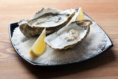 Oysters — Stock Photo