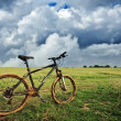 Bike — Stock Photo #22685087