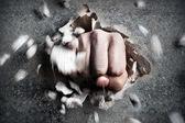 拳 — ストック写真