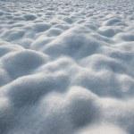 Snow — Stock Photo #35366801