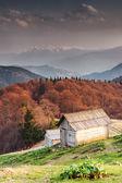 Montane — Foto Stock
