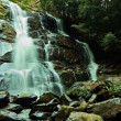 Waterfall in deep forest. - Stock Photo