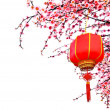 chinese lantern — Stock Photo
