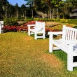White bench — Stock Photo #39374937