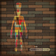 Colorful human on on brick wall — Stock Vector