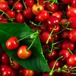 Sweet cherry and strawberry — Stock Photo