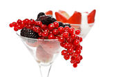 Berry cocktail — Stock Photo