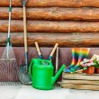 Garden tools — Stock Photo #23179394