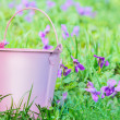 Small pink pail against grass — Stock Photo