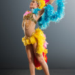 Samba Dancer - Stock Photo